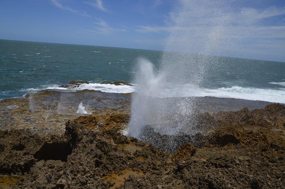 Blowholes à Point Quobba