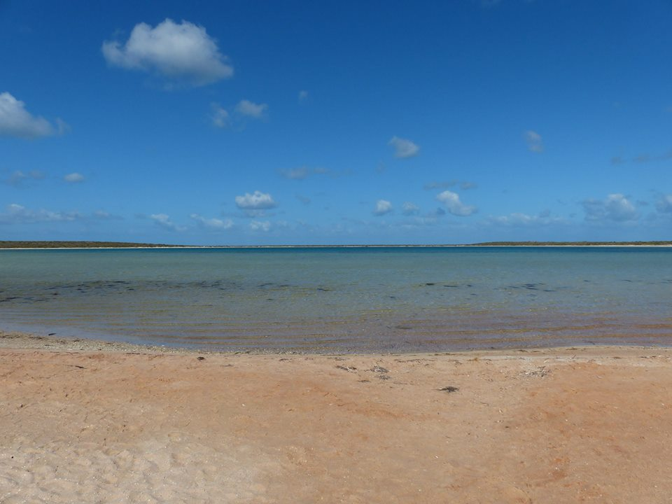 Little Lagoon - Shark Bay