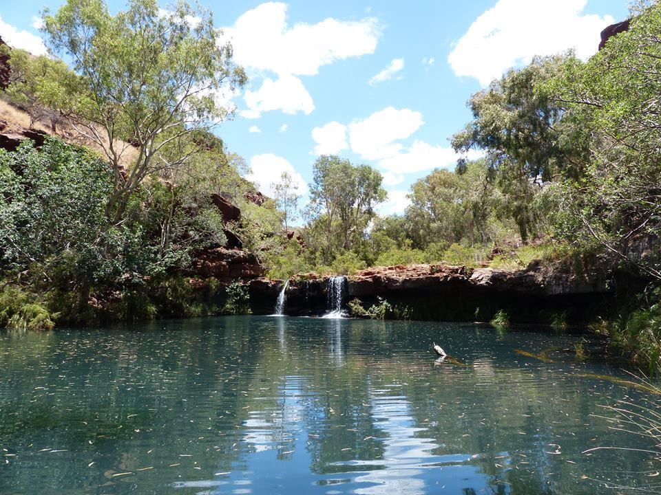 Fern Pool - Karijini