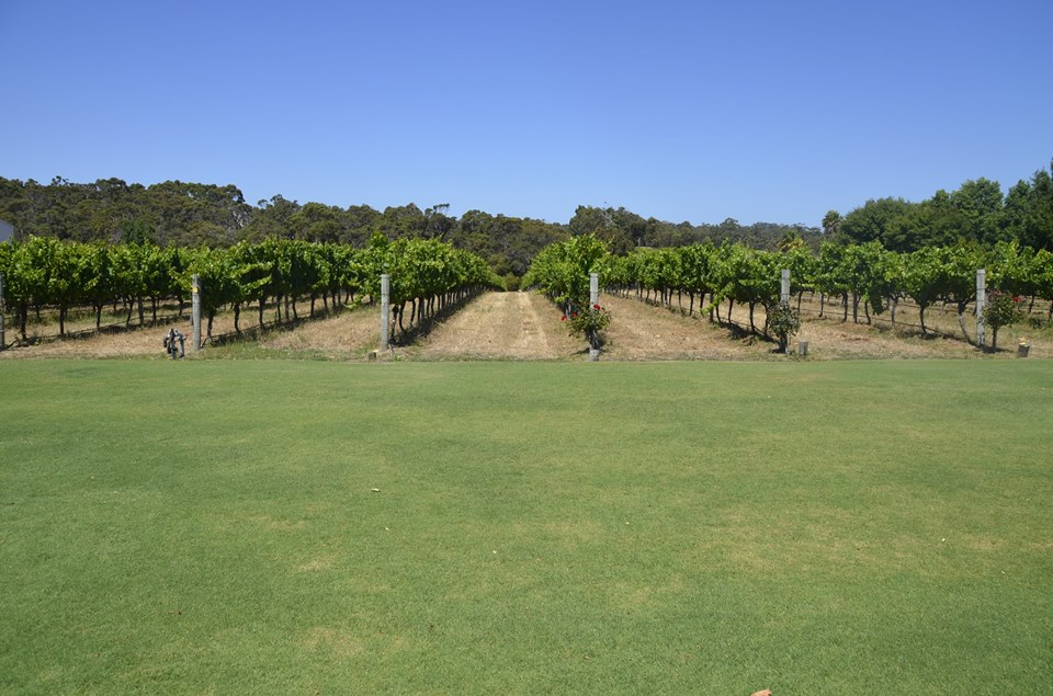 Vignes de Voyager Estate