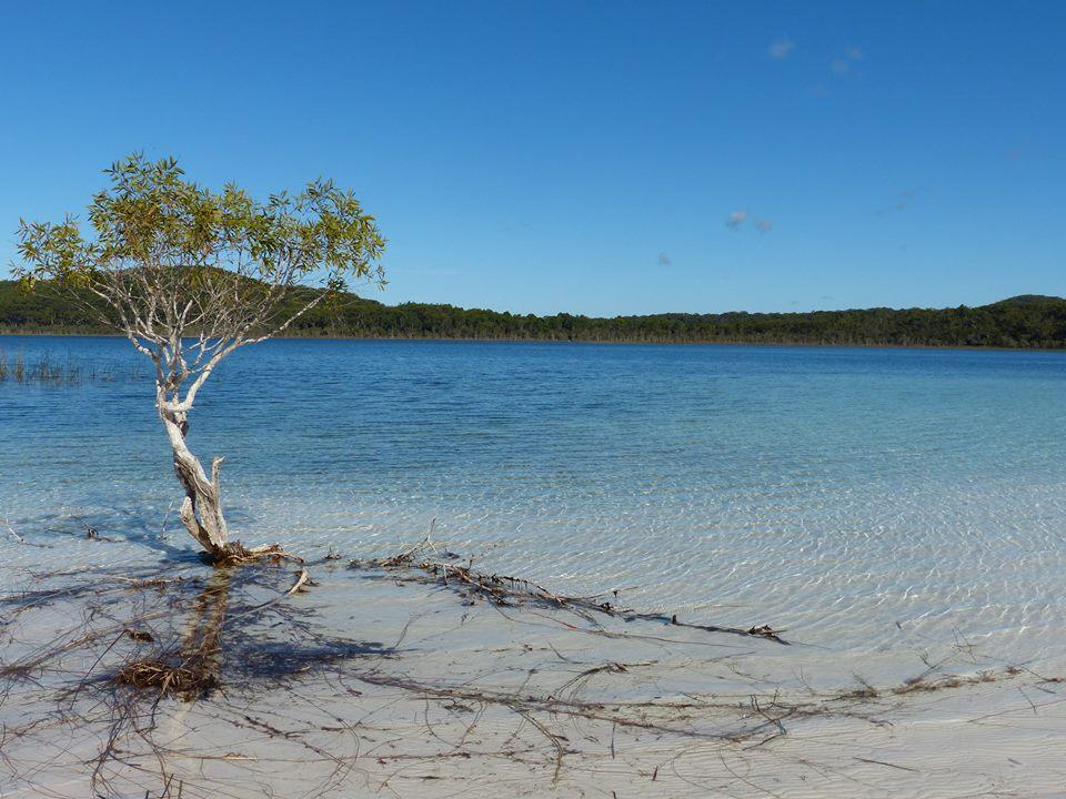 Birrabeen Lake, Fraser Island
